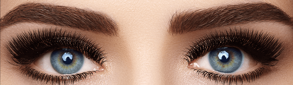 Brows & Lashes Banner